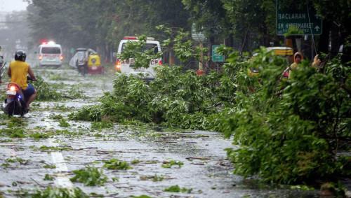 В Китае тайфун «Раммасун» забрал жизнь 8 человек и ранены 100