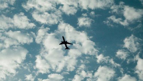 Федеральная антимонопольная служба создаст базу данных по продаваемым авиабилетам