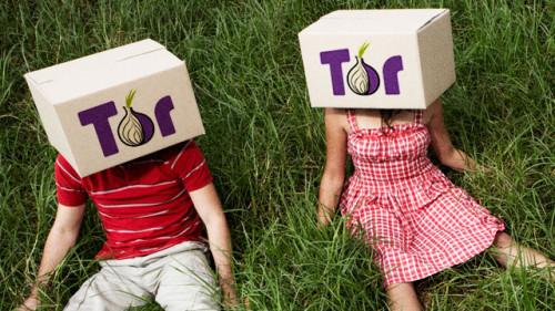 МВД России замахнулось на взлом сети Tor и обещает 3,9 млн рублей