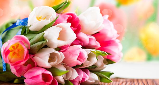 Цветы с 8 марта женщинам массовая доставка цветов